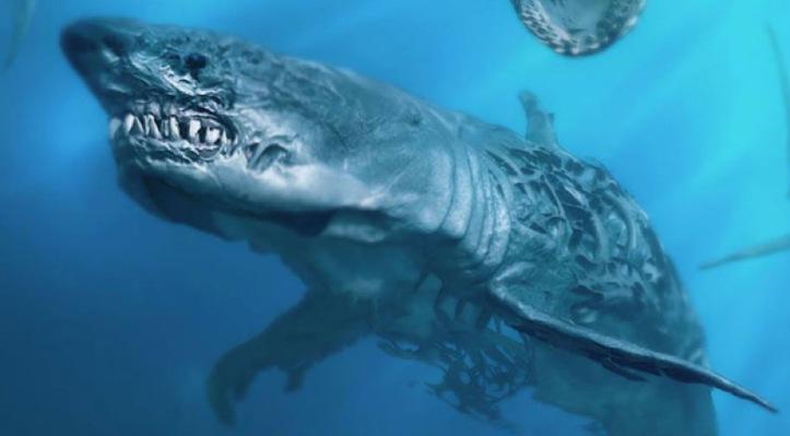requins-fantomes-pirates-des-caraibes