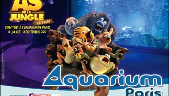 Sorties Zig Sharko Sont A L Aquarium De Paris Jeux